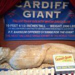 Der Riese von Cardiff - The Cardiff Giant